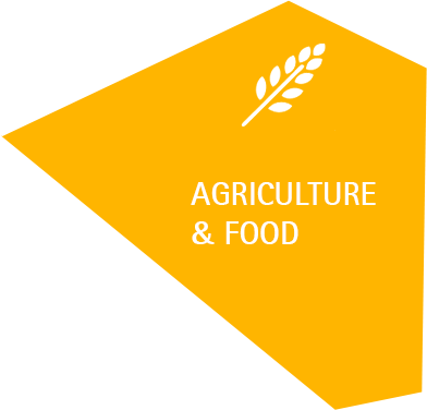 Agriculture Food