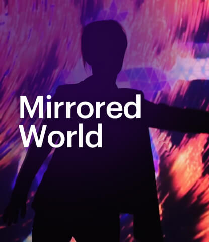 Mirrored World