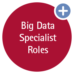 Big Data Specialist Roles