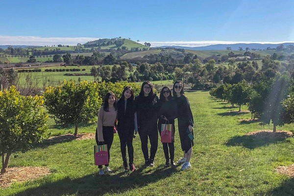 We went to Yarra Valley for wine and chocolate tasting as part of the Associate Academy Training