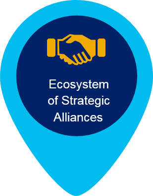 Ecosystem of Strategic Alliances