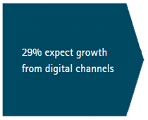29% expect growth from digital channels