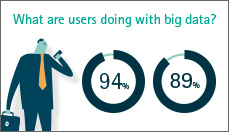 Achieving big success from big data