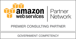 Government Consulting Partner
