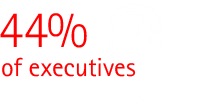 44% of executives cite efficiency issues