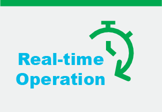 Real-time Operation