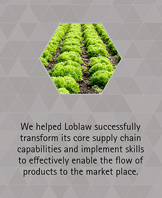 We helped Loblaw successfully transform its core supply chain capabilities and implement skills to effectively enable the flow of products to the market place.