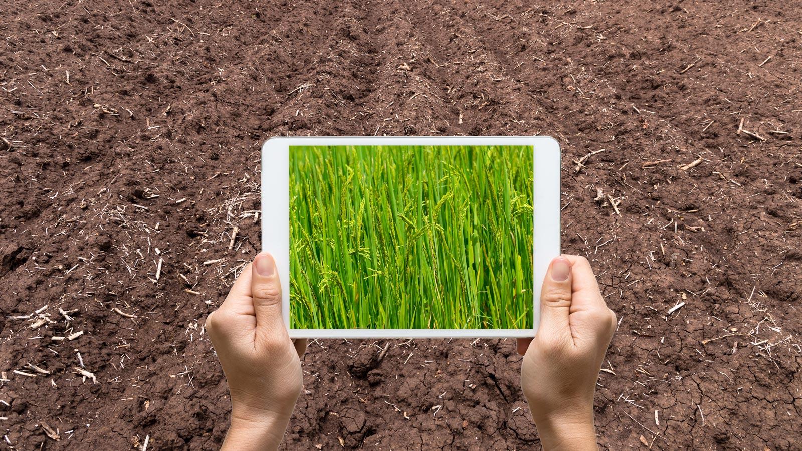 物流公司_六大技术趋势通往数字化农业