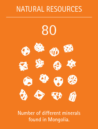 80: Number of different minerals found in Mongolia.