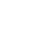 FOX NETWORK GROUP
