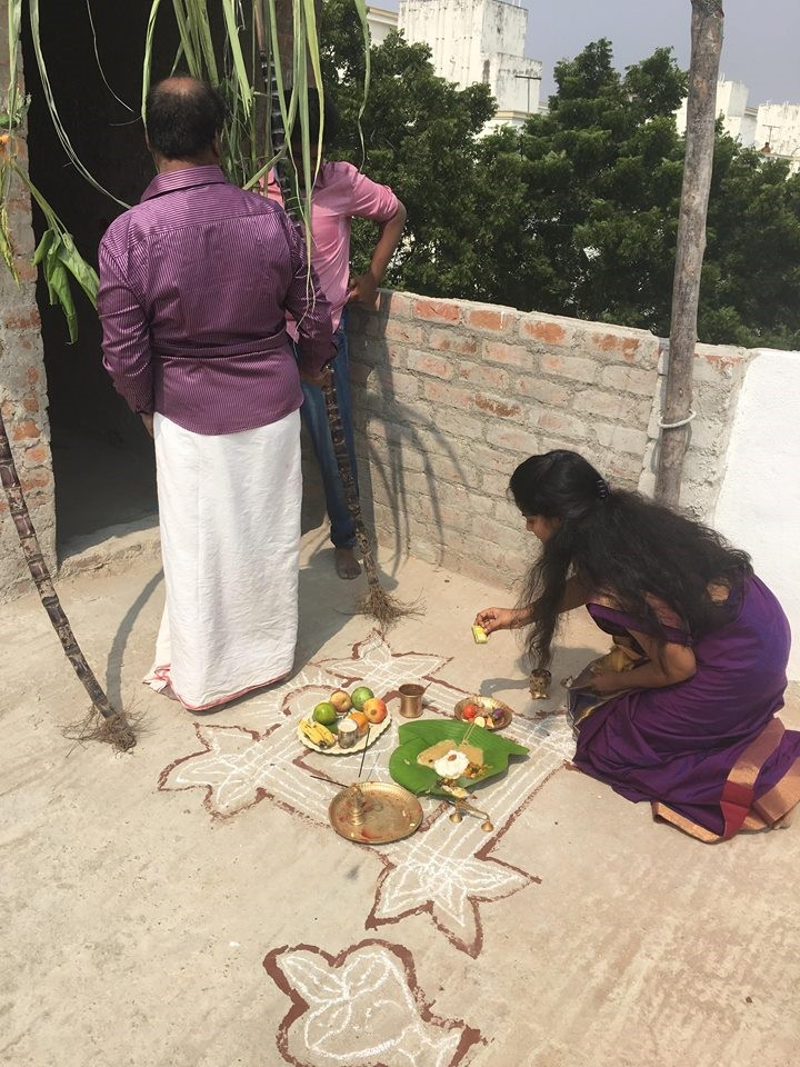 Actual Pongal Home Celebration