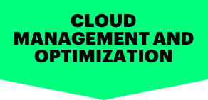 CLOUD MANAGEMENT AND OPTIMIZATION