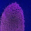 Biometric authentication in the new digital world