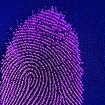 Biometric authentication in the New Banking world