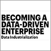Becoming a data-driven enterprise
