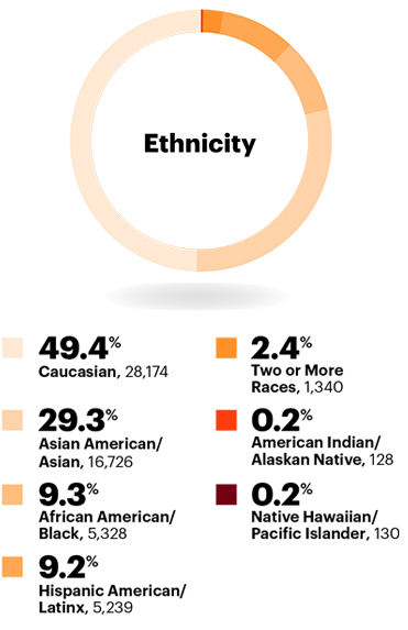 Ethnicity: Overall race and ethnicity in the workplace statistics: Half (50.9%) of Accenture's workforce is ethnically diverse in 2018