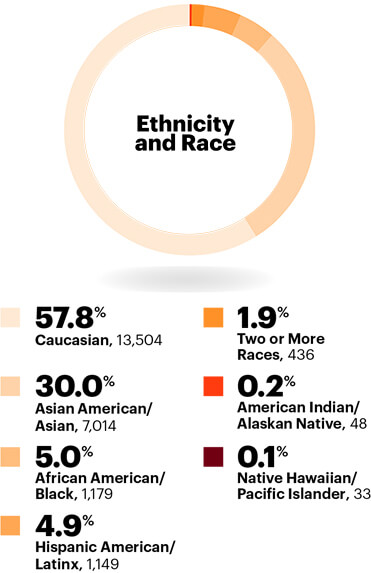 Ethnicity: Race and ethnicity in the workplace statistics for executives only: In 2018, more than 41% of our executives are of diverse backgrounds.