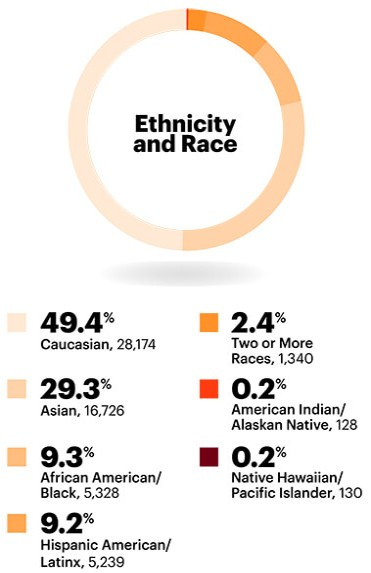 Ethnicity and Race: Overall race and ethnicity in the workplace statistics: Half (50.9%) of Accenture's workforce is ethnically diverse in 2018