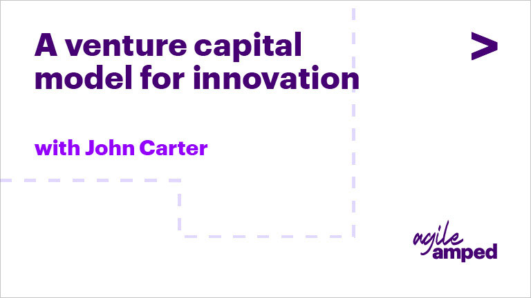 A Venture Capital Model for Innovation