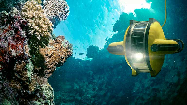 Powering coral reef restoration with AI